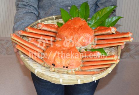 解凍後の北釧水産のズッシリしたズワイガニ