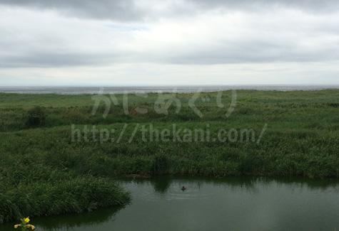 北海道釧路から見た海