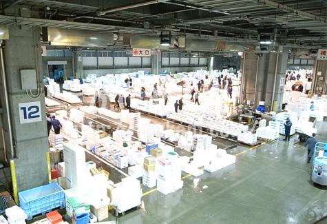 広い札幌市中央卸売市場