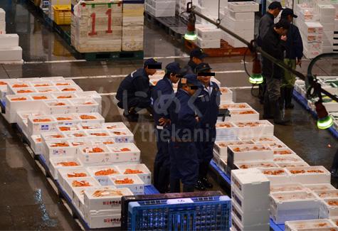 札幌市中央卸売市場でカニ競り前の買い付け人