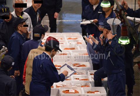 札幌市中央卸売市場のカニ競り
