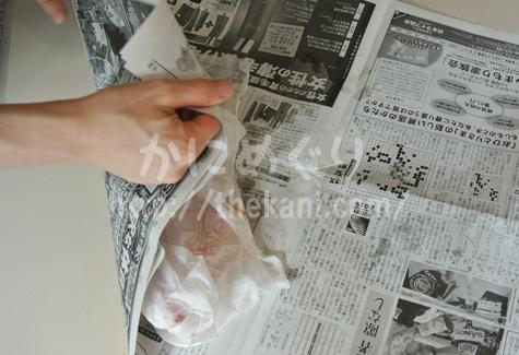 北釧水産のズワイガニを上手に自然解凍