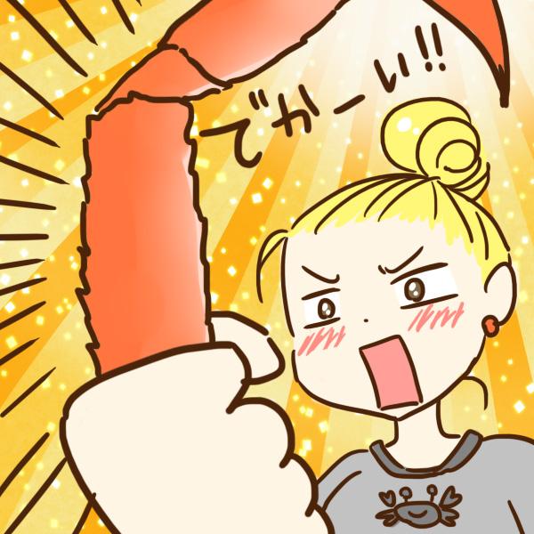 【カニを通販で購入】北海道直送のタラバガニ・ズワイガニ・毛ガニに大満足