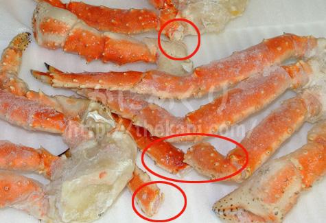 訳あり(足が折れている)蟹
