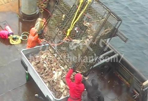 ズワイガニ漁
