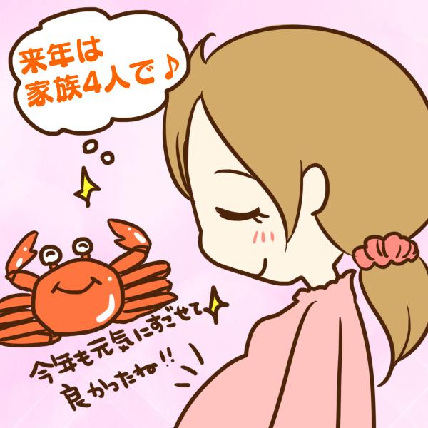 【新潟の魚市場からカニを直送】年末は美味しいカニを食べて年越し