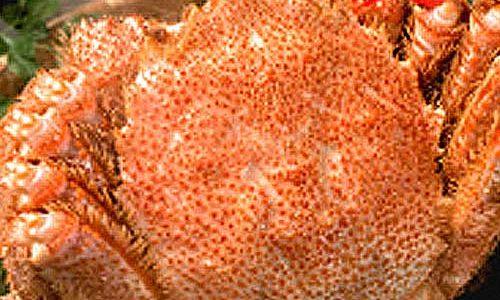 毛ガニ通販おすすめは北釧水産!身入り90%以上、北海道産毛ガニを販売